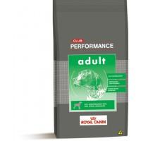 CLUB PERFORMANCE ADULT