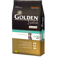 Golden Gatos Filhotes